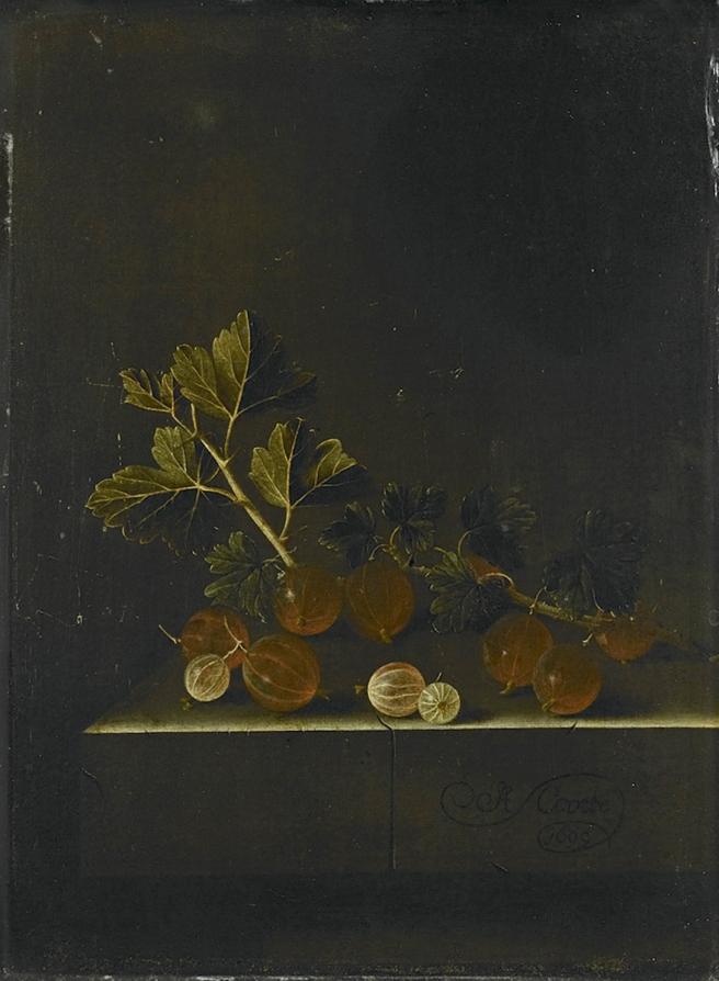 Adriaan Coorte kruisbessen 1699 (Rijks).jpg